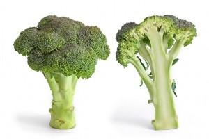 Le Brocoli : un légume santé