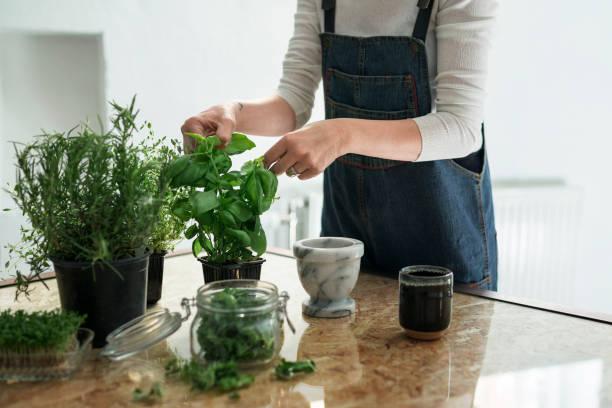 Femme en train de planter des aromates en pots
